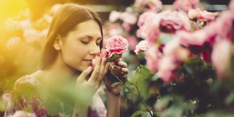 Top 10 Best Smells