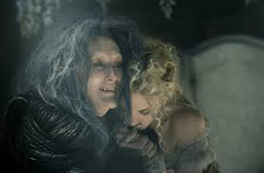 Into the Woods: a review for a tangled tale