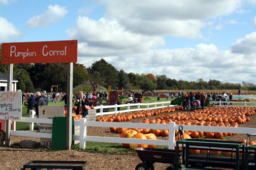 Where to go this weekend: orchards and farms
