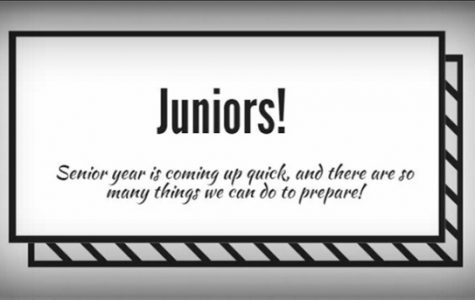 Guidance for juniors