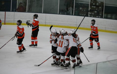 Huskie Hockey Season Recap
