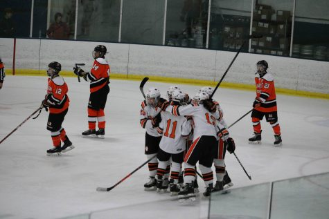 Huskie Hockey Season Recap