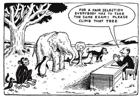How well do standardized tests measure student abilities?