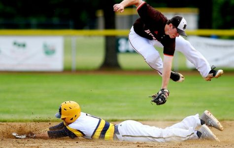 Baseball team falls to Grand Ledge in delayed regional final