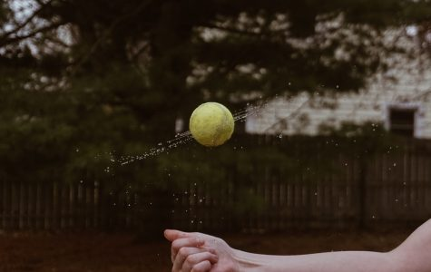 Photo challenge #3: water and a tennis ball