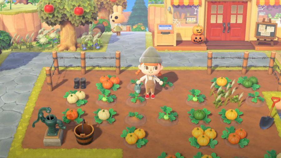 Animal Crossing - Fall Updates