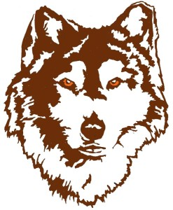 Huskie Women's Basketball Preview