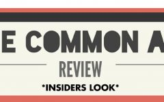 The Common App: an insider's review