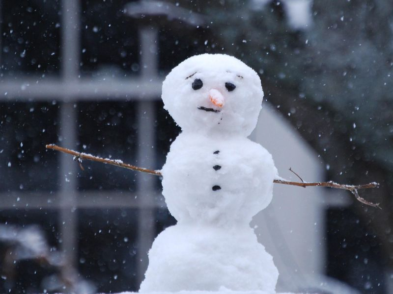 Should we cancel breaks amidst an abundance of snow days?