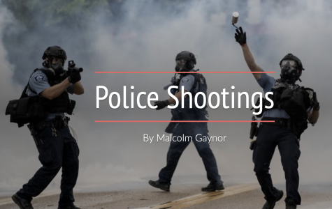Police shootings: a portrait of the data