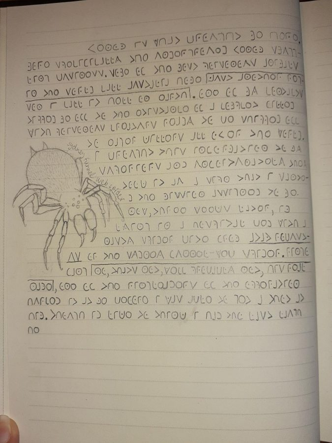 This journal entry was written in code using a pencil. The illustration of a spider adds intrigue to an otherwise simple page.