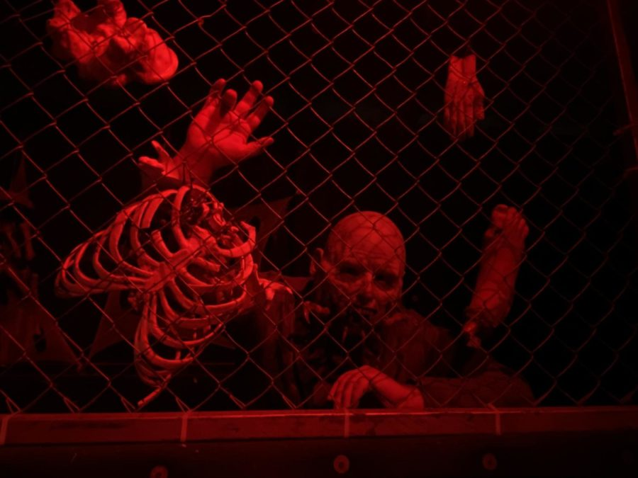 The Niles Scream Park has 7 attractions this year, including its flagship attraction, a massive haunted house.